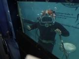 badenfm-Unter_Wasser-Weltrekord-014