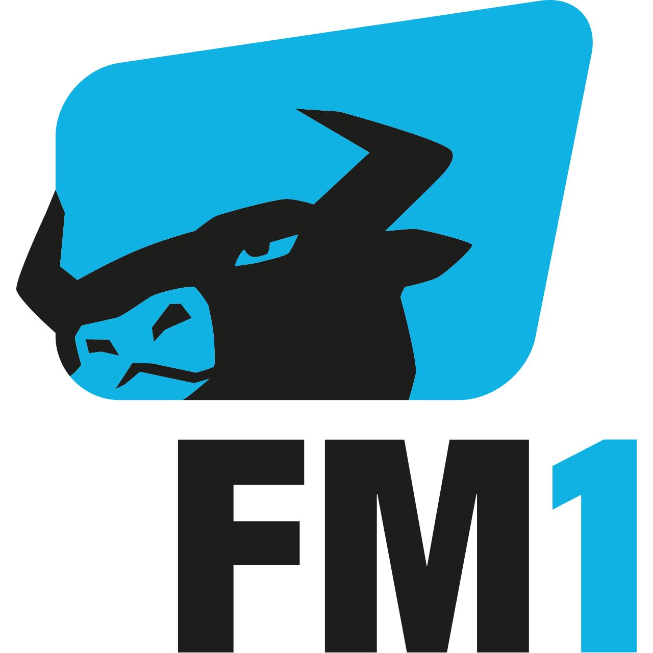 webchannel_fm1