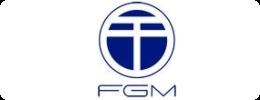 FGM - Forschungsgruppe Medien GmbH