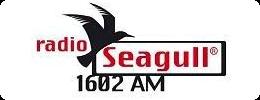 RadioSeagull-small