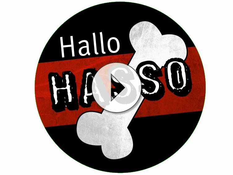 """""""Hallo Hasso"""" ist der erste Radio-Kanal speziell für Hunde. Zu empfangenist über die neue Radio Ton App für Android und iOS und auf hallohasso.de."""