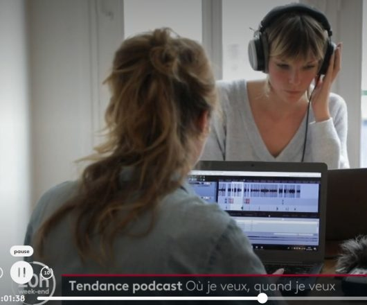 Das ist Feinarbeit. (Screenshot: France 2)