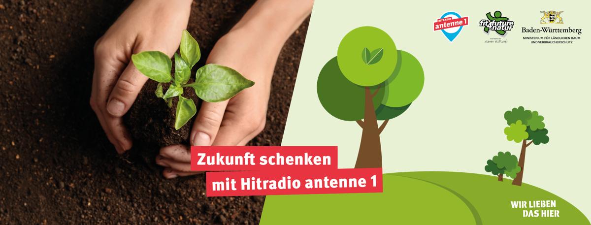 Zukunft schenken mit Hitradio antenne 1: 90.000 neue Bäume fürBaden-Württemberg