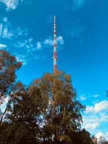 NDR Antennemast in Steinkimmen (Bild: ©90vier)